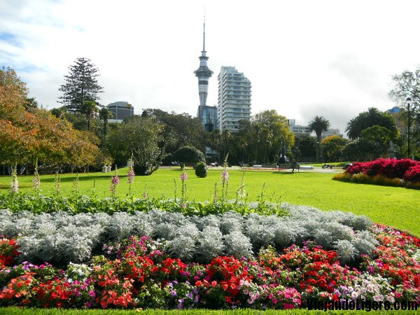 Albert_Park_Auckland_Sky_Tower