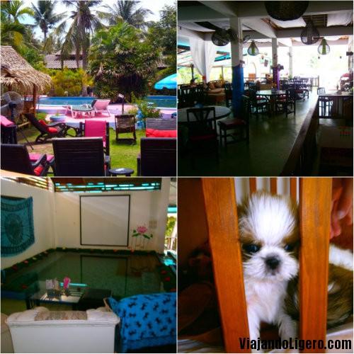 Hard Road Café, Koh Phangan