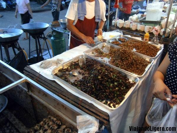 Comida insectos Chiang Rai Tailandia