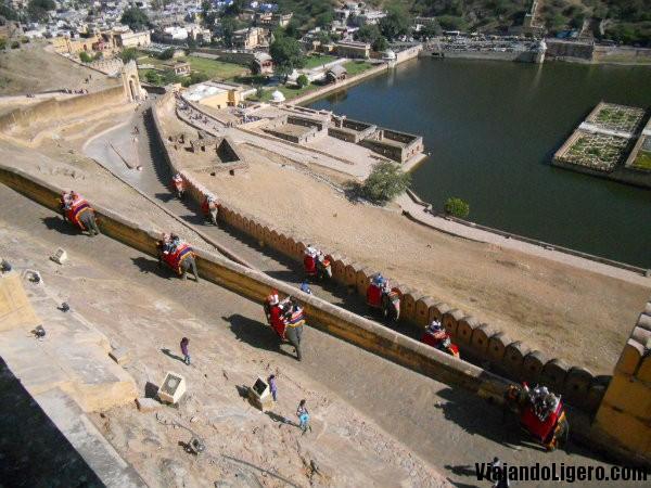 elefantes en Amer Fort, Jaipur