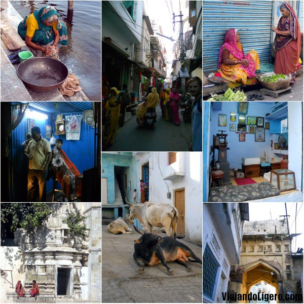 Udaipur collage