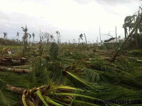 Isla de Malapascua, tifón Haiyan
