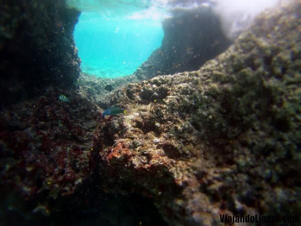 Buceando en Malapascua
