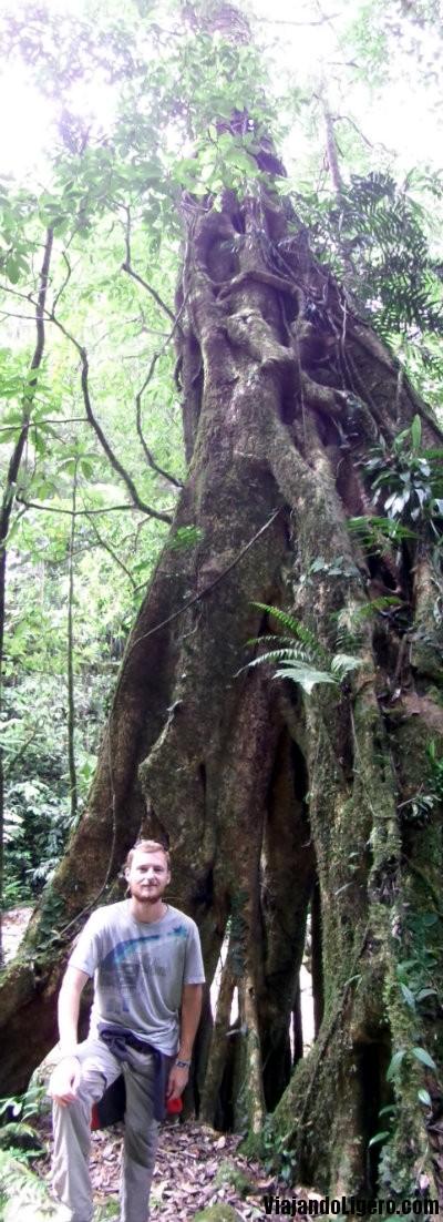 Parque Nacional Monte Kinabalu