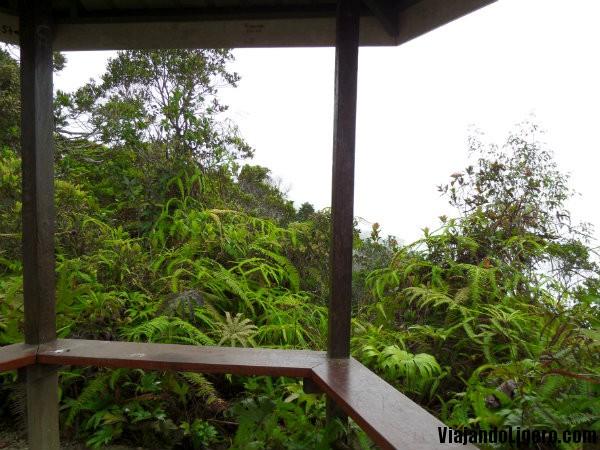 Monte Kinabalu mirador