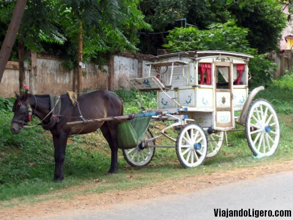 Carro de caballos en Pyin Oo Lwin